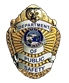 Department of Public Safety Badge